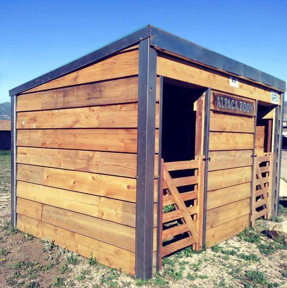 Alpaca Shed made out of solid wood and metal roofing with custom made door