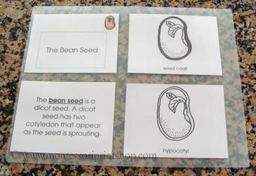 How to laminate Montessori Nomenclature - Montessori Print Shop