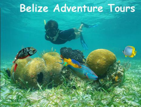 A young boy snorkels at the Belize barrier reef viewing colorful corals and tropical fish. Belize Adventure Tours