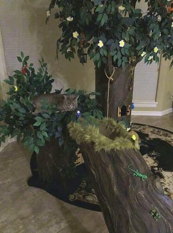 Fantasy Forest Custom Cat Trees