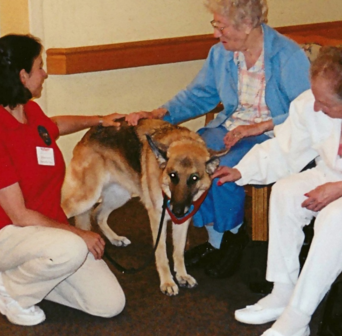 Diana Simonsen and Tyra volunteering as a Therapy Dog International team