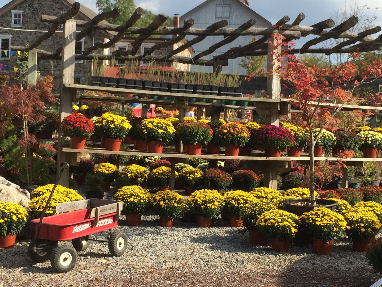 Landscape Supply, Nursery - Kospia Farms - Alburtis, Pa