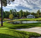 Find a Pinehurst realtor, find a Pinehurst real estate agent, best Pinehurst real estate agent, best pinehurst realtor