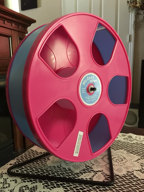 Wodent Wheel In Pink/Periwinkle