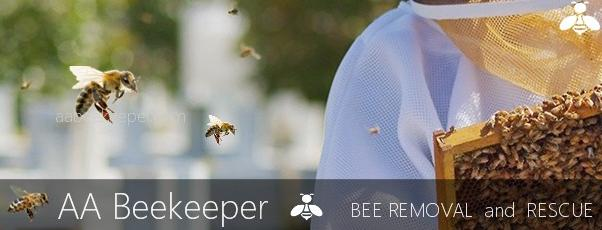 Fountain Valley Bee Removal