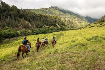 horseback riding, trail rides, maui activity, horse riding, horsemanship