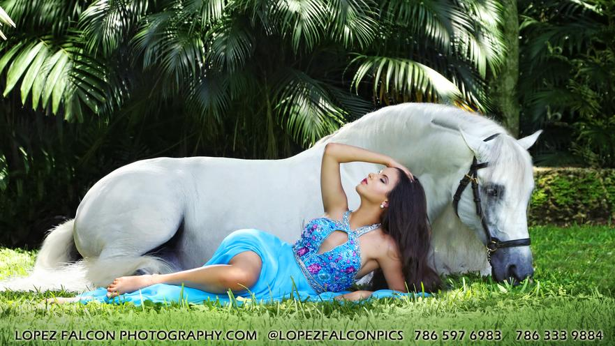 HORSE FOR QUINCEANERA PHOTOGRAPHY IN MIAMI FOTOS DE 15 ANOS QUINCE CON CABALLO BLANCO QUINCEANERA WHITE HORSE