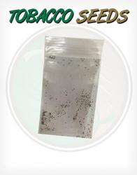 Tobacco Seeds for growing tobacco plants