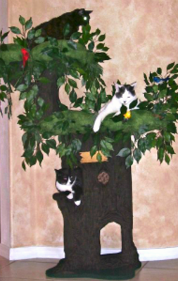 Enchanted Cat Tree