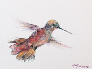 In A Whirr of Joy, hummingbird colored pencil drawing by Lindy C Severns