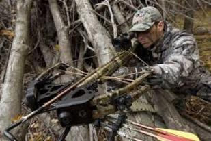 Kentucky crossbow hunting