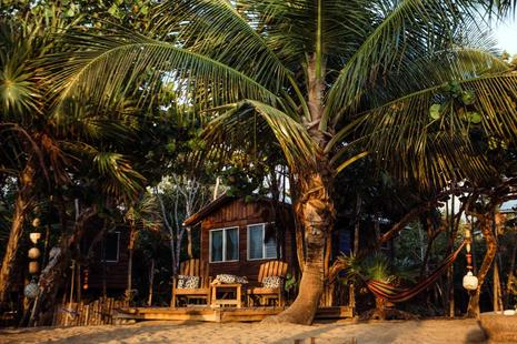 The Driftwood Bungalow. A cabin made of Belize hardwoods is tucked into palm trees on the beach. A deck with beach chairs sits in front facing the Caribbean Sea.