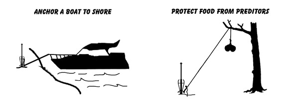 Anchor A Boat to Shore -OR- Protect Food from Predators