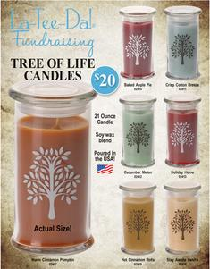 Home Interiors Candle Fundraiser Brochure