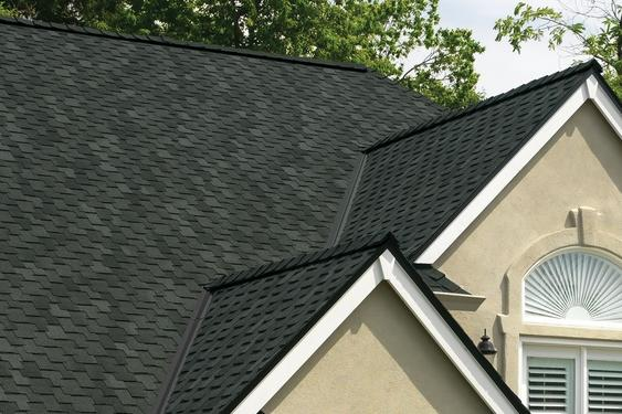 Roofing Contractor Services - Designer Roofing Shingles