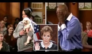 An Emotional judgment by Judge Judy The dog chooses his owner