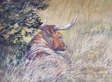 The Good Life, original pastel landscape by Texas artist Lindy Cook Severns. Longhorn in grassy shade.