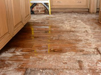https://theflooringblog.com/post-flood-improper-drying-what-risks-your-home-is-facing/