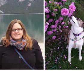 Dog Training Experts - Canine Minds and Manners Dog Training