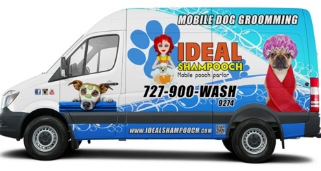 Mobile Car Wash St Petersburg Fl