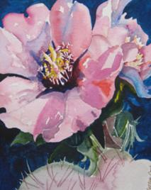 A Watercolor cactus blossom by Bettye Cook, artist mother to Lindy Cook Severns
