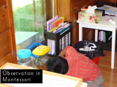 observation in the montessori classroom - montessori print shop