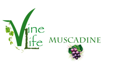 Vine Life Muscadine Grape Seeds & Skins Products