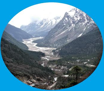 Yumthang Valley The Valley of Flour Tour North Sikkim Tour Packages