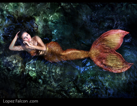QUINCES MERMAID PHOTO SHOOT MIAMI FL USA