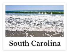 South Carolina online chiropractic CE seminars continuing education courses for chiropractors credit hours state board approved CEU chiro courses live DC events