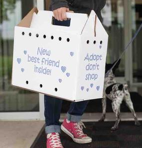 """Adopt-A-Pet"" Pet box carrier"
