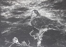 Ahead of the Storm, etching by Lindy C Severns