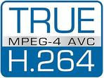 Video Surveillance With H.264 MPEG Compression