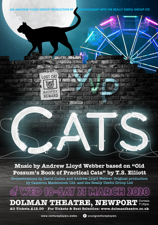 Click to book tickets for Cats via the Dolman Theatre website