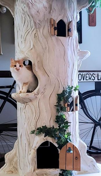 Extra Large Cat Tree
