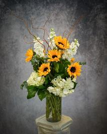 Sunflowers, Hydrangea, Snapdragon, Curly Willow