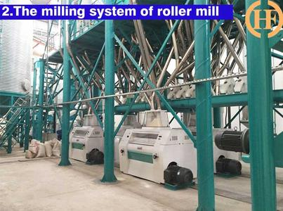 Automatic maize roller mill,complete maize milling line