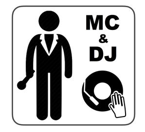 Silver Wedding DJ Package