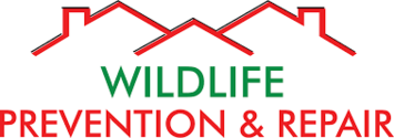 Wildlife Prevention and Repair