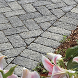 Cassova Concrete Walkway Paver