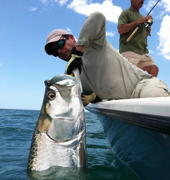 Sarasota boca grande fl tarpon fishing charter grande for Anna maria island fishing report