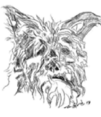 Motley Dog Dog Training LLC motley's Logo