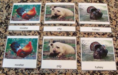 laminated montessori 3-part cards