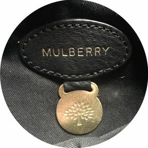 mulberry-authentication-services