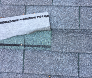 Roofs Storm Wind Damage Creased Shingles