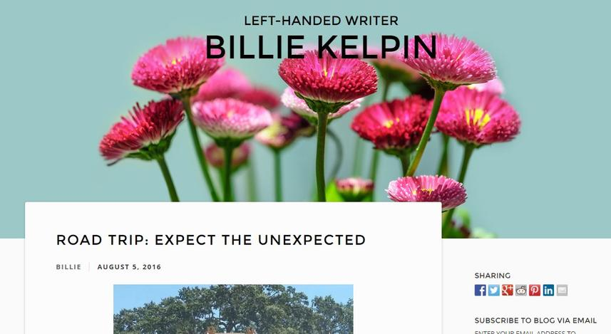 billie kelpin blog on business and life