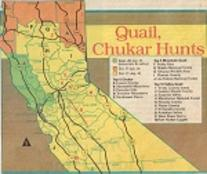 upland bird hunting clubs and ranches locations