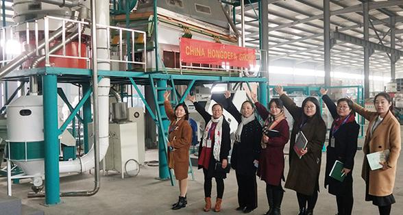 120T/24h maize milling machine in Hongdefa