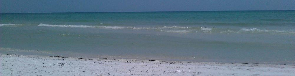 Siesta Key Beach view. Crystal white sand and blue water.