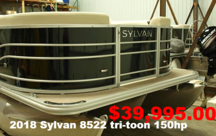 22 foot pontoon for sale, Sylvan 8522 LZ, Twin toon, Evinrude, Buckeye Lake Potoon sales, Buckeye Lake